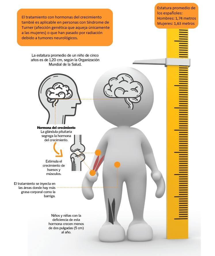 hormone de croissance chez les enfants infographie